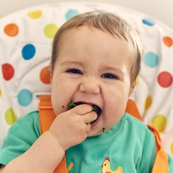 start4life baby weaning